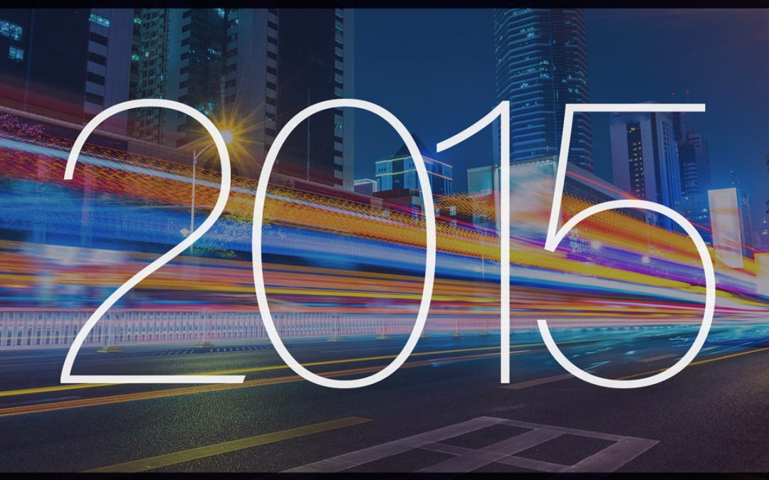 Investment Year in Review 2015